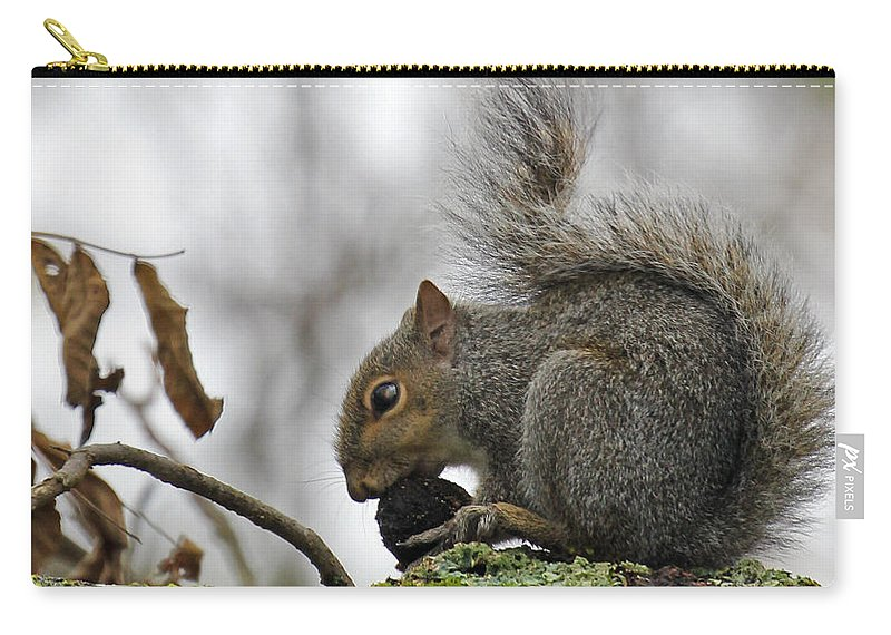 Curled Tail. Squirrel Carry-all Pouch featuring the photograph Curled Tail by Jennifer Robin
