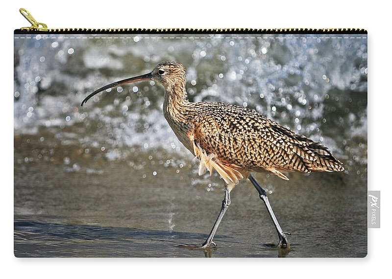 Fauna Carry-all Pouch featuring the photograph Curlew And Tides by William Freebilly photography