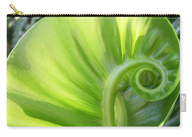 Leaf Carry-all Pouch featuring the photograph Curly Leaf by Amy Fose