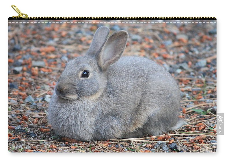 Rabbit Carry-all Pouch featuring the photograph Cute Campground Rabbit by Carol Groenen