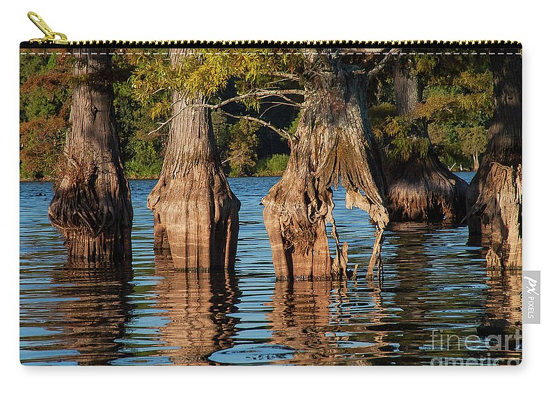 Reelfoot Lake State Park Carry-all Pouch featuring the photograph Cypress Grove One by Bob Phillips