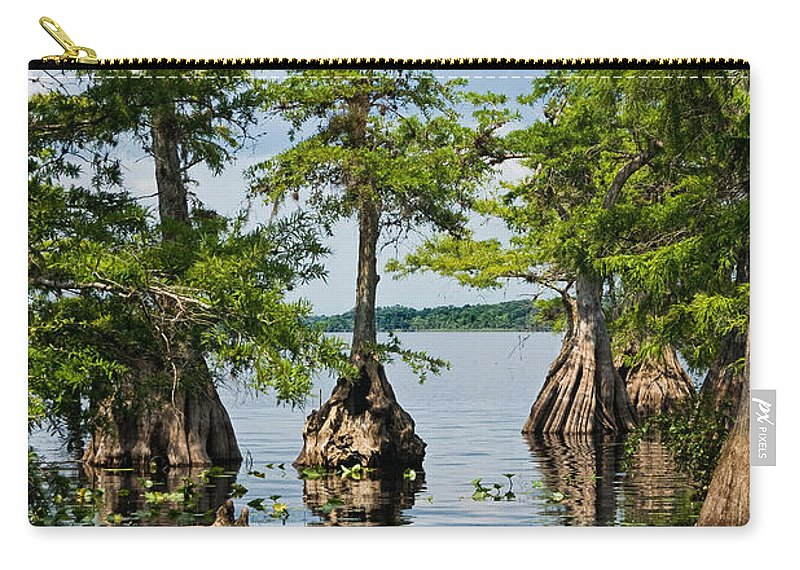 Trees Carry-all Pouch featuring the photograph Cypress Reflections by Christopher Holmes