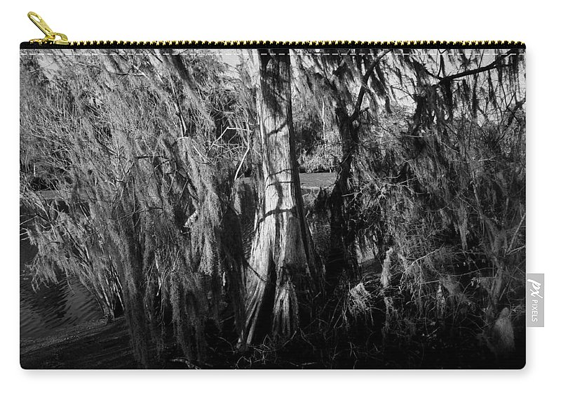 Cypress Tree Carry-all Pouch featuring the photograph Cypress Tree by David Lee Thompson