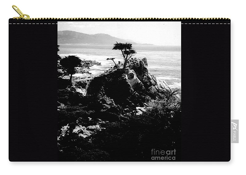 Cypress Carry-all Pouch featuring the photograph Cypress Trees by Kathleen Struckle