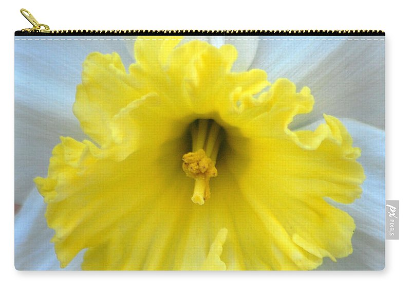 Daffodil Carry-all Pouch featuring the photograph Daffodil by Amy Fose