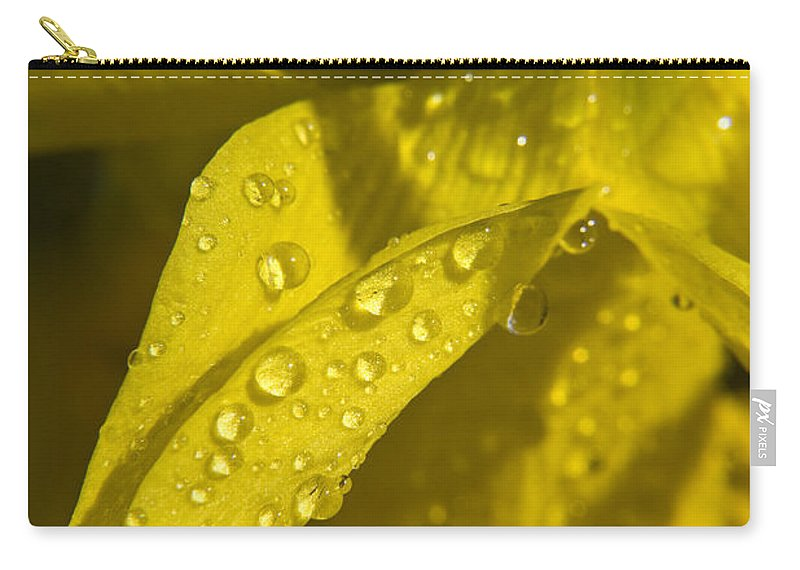 Daffodil Carry-all Pouch featuring the photograph Daffodil Dew by Teresa Mucha