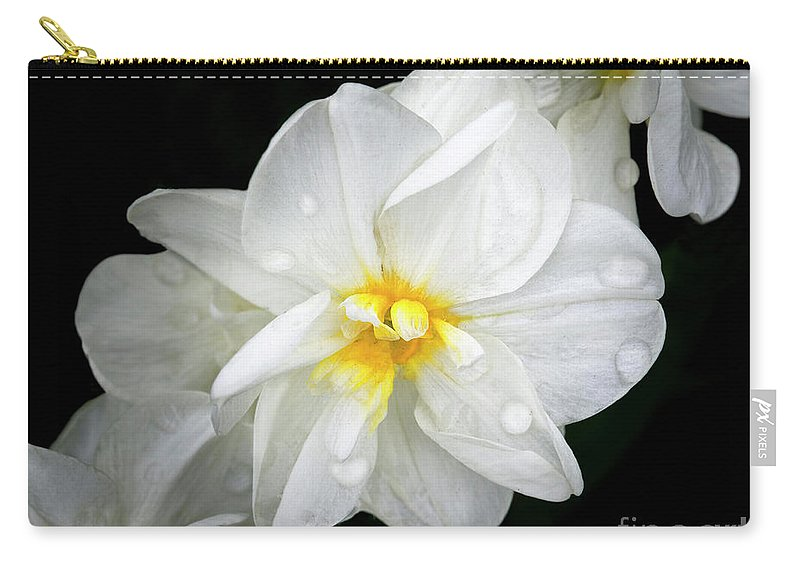 Daffodils Carry-all Pouch featuring the photograph Daffodil Diagonal by Emma England