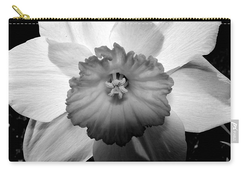 Daffodil Carry-all Pouch featuring the photograph Daffodil In Springtime by Michelle Calkins