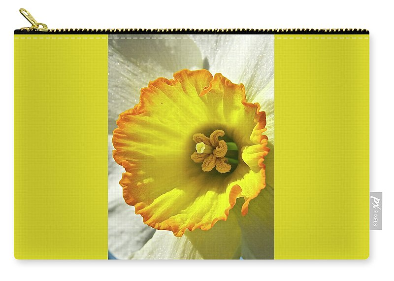 Daffodil Carry-all Pouch featuring the photograph Daffodil by Michael Peychich