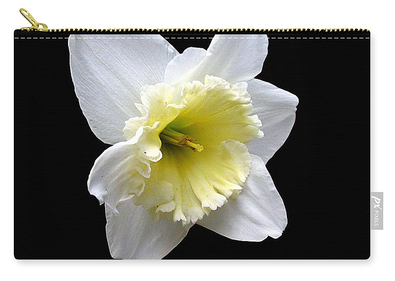 Daffodil Carry-all Pouch featuring the photograph Daffodil On Black by J M Farris Photography
