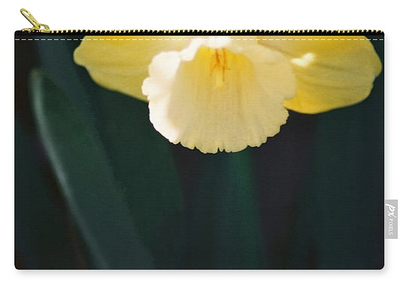 Daffodil Carry-all Pouch featuring the photograph Daffodil by Steve Karol