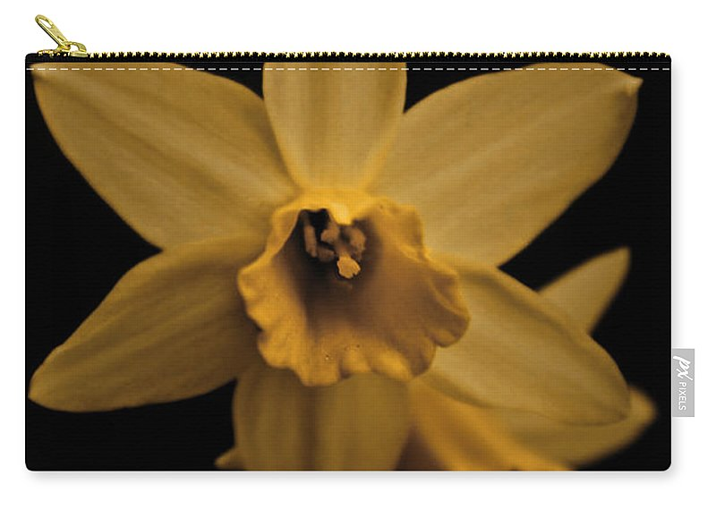 Flower Carry-all Pouch featuring the photograph Daffodils by Danielle Silveira