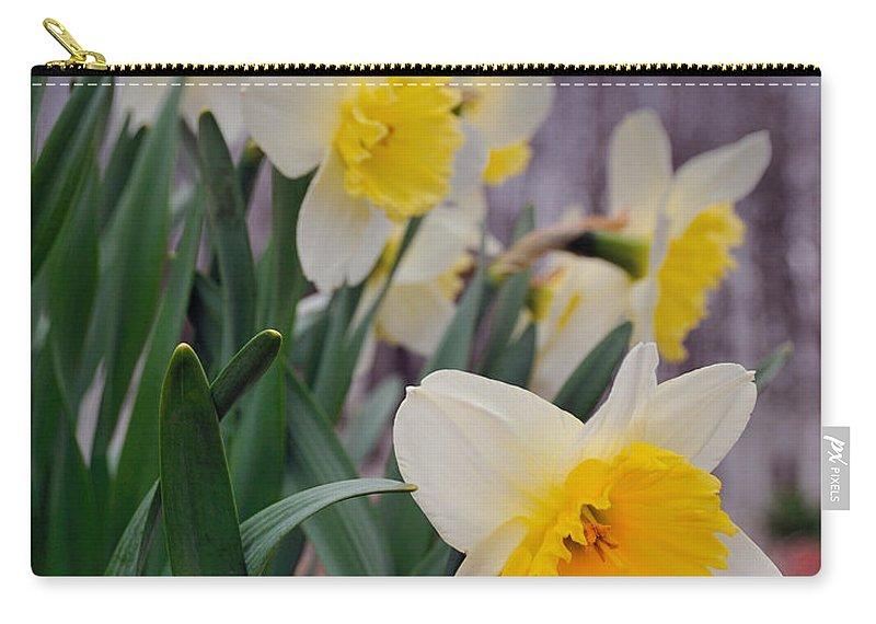 Flowers Carry-all Pouch featuring the photograph Daffodils by David Arment