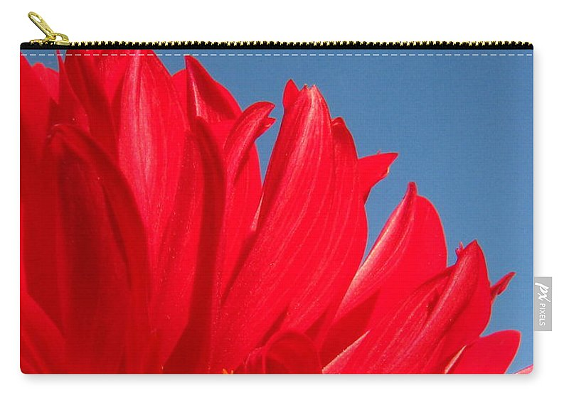 Dahlia Carry-all Pouch featuring the photograph Dahlia by Amanda Barcon
