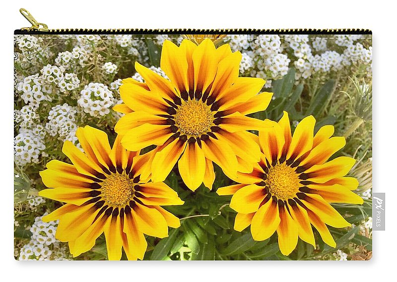 Photography Carry-all Pouch featuring the photograph Daisies 3a by Christine McCole