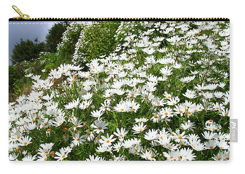Countryside Carry-all Pouch featuring the photograph Daisies by Gaspar Avila