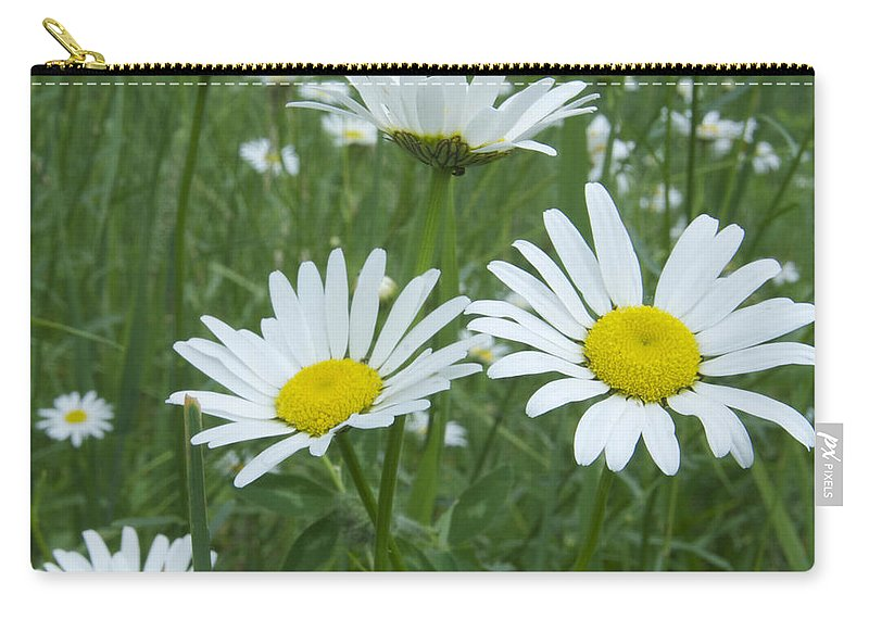 Flower Carry-all Pouch featuring the photograph Daisies by Michael Peychich