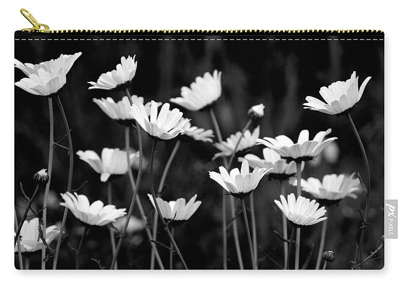 Daisy Carry-all Pouch featuring the photograph Daisy Daisy by Michaele Boncaro