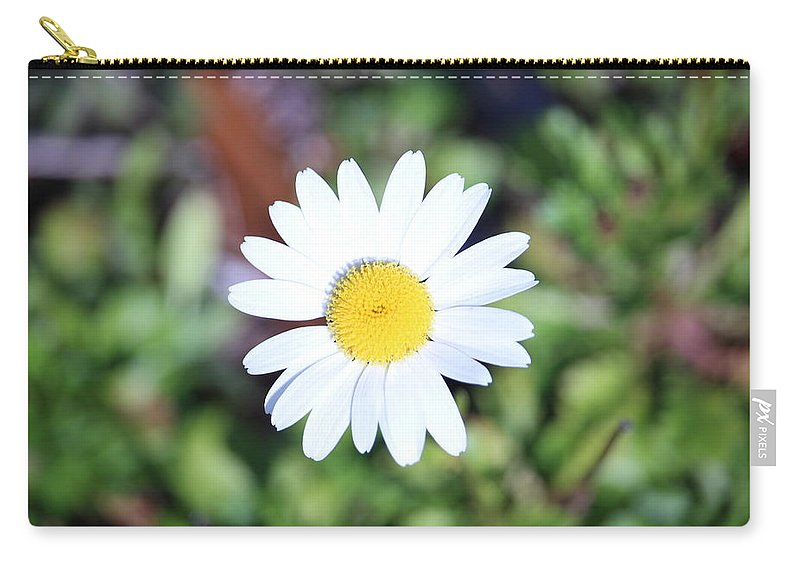 Daisy Carry-all Pouch featuring the photograph Daisy by Emily Shand