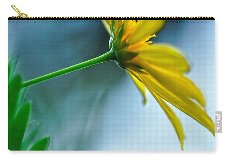 Photography Carry-all Pouch featuring the photograph Daisy In The Breeze by Kaye Menner