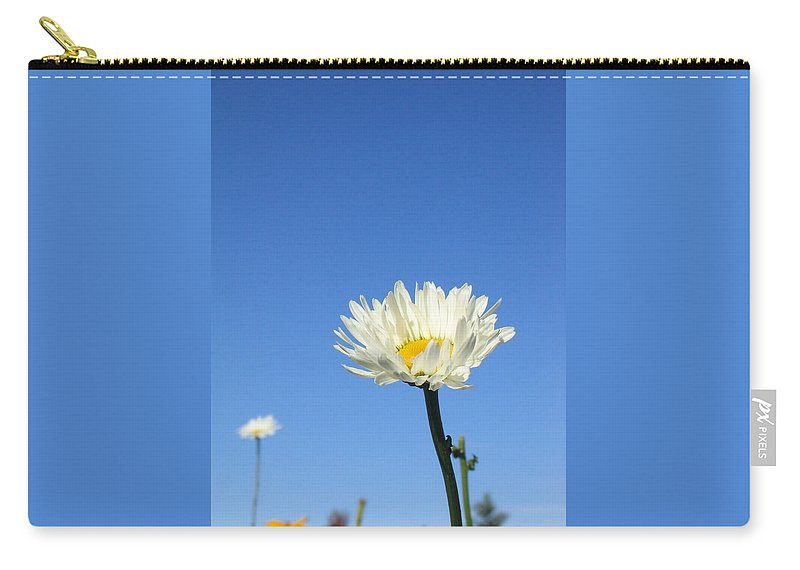 Landscape Carry-all Pouch featuring the photograph Daisy In The Sky by Dawn Marshall