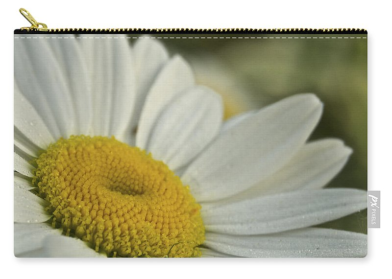 Flower Carry-all Pouch featuring the photograph Daisy by Michael Peychich