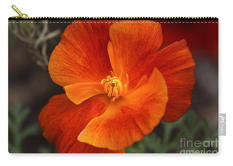 Flower Carry-all Pouch featuring the photograph Dances Of Light by Deborah Benoit
