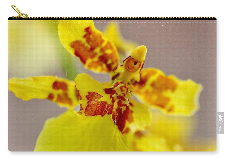 Oncidium Orchid Carry-all Pouch featuring the photograph Dancing Lady Orchid by Mesa Teresita