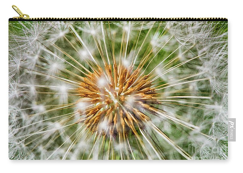 Dandelion Carry-all Pouch featuring the photograph Dandelion Explosion by Mary Raderstorf