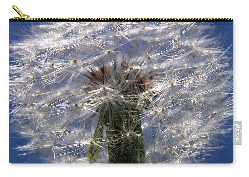 Dandelion Carry-all Pouch featuring the photograph Dandelion by Ralph A Ledergerber-Photography