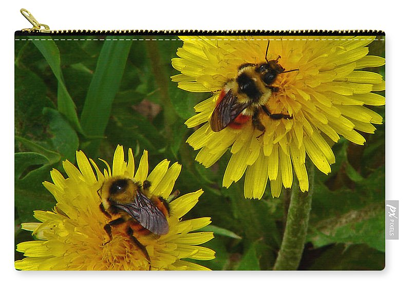 Dandelion Carry-all Pouch featuring the photograph Dandelions And Bees by Heather Coen