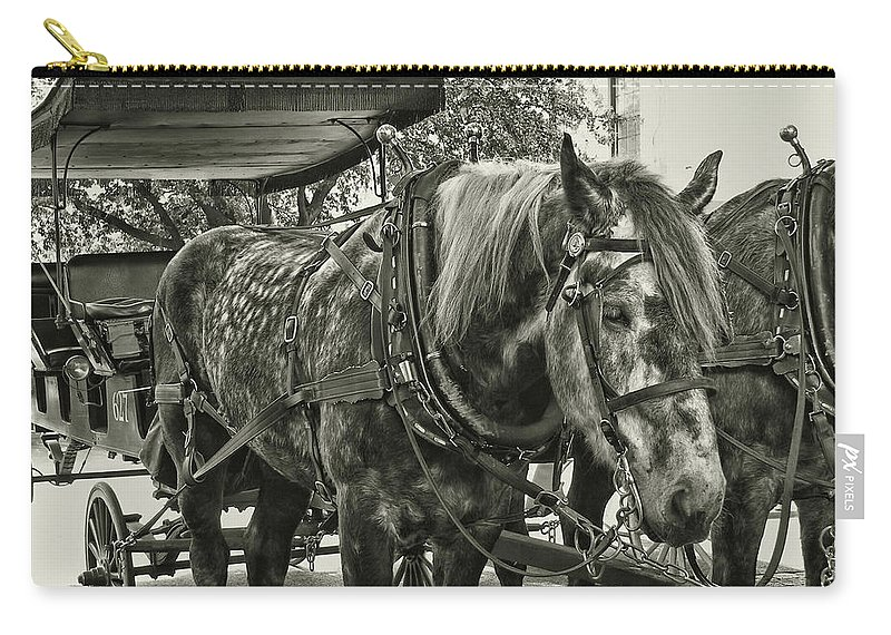 Horse Carry-all Pouch featuring the photograph Dapple Grey by JAMART Photography