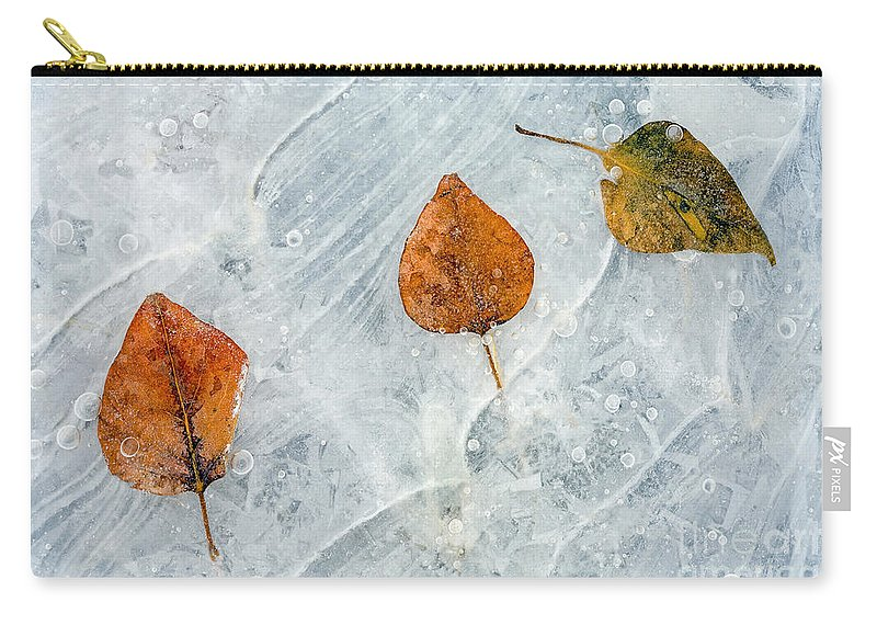 Leaves Carry-all Pouch featuring the photograph Dare To Be Different by Mike Dawson