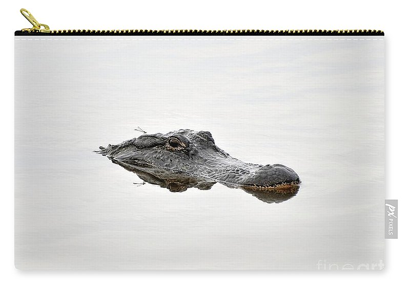 American Alligator Carry-all Pouch featuring the photograph Daring Damselfly by Al Powell Photography USA