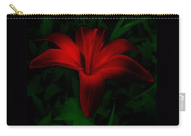 Lily Carry-all Pouch featuring the painting Dark Star by RC deWinter