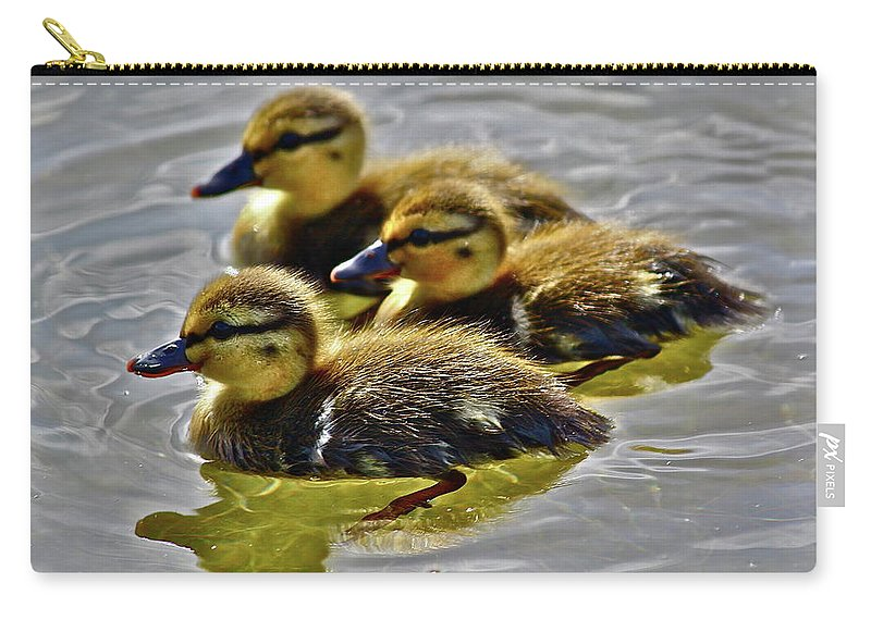 Ducks Carry-all Pouch featuring the photograph Darling Ducks by Diana Hatcher
