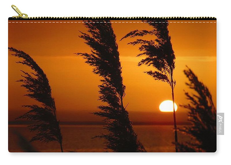 Sunrise Carry-all Pouch featuring the photograph Dawn Grasses by Rrrose Pix