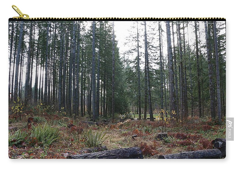 Trees Carry-all Pouch featuring the photograph Day In The Park by Dani Keating