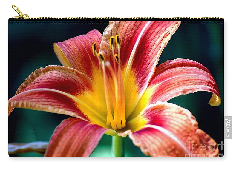Landscape Carry-all Pouch featuring the photograph Day Lilly by David Lane