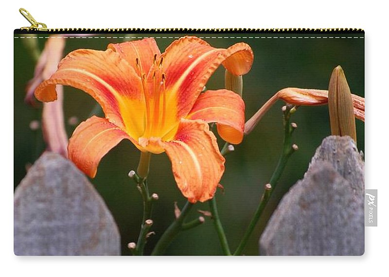 Digital Photograph Carry-all Pouch featuring the photograph Day Lilly Fenced In by David Lane