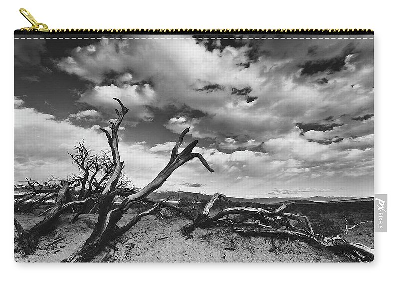 Landscape Carry-all Pouch featuring the photograph Dead Trees at Mesquite Dunes by Nathan Spotts
