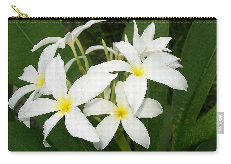 Plumeria Alba Carry-all Pouch featuring the photograph Deadly Beautiful by Laurette Escobar