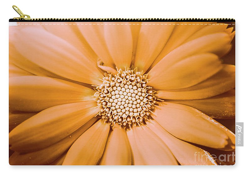 Flower Carry-all Pouch featuring the photograph Decorative Closeness by Jorgo Photography - Wall Art Gallery
