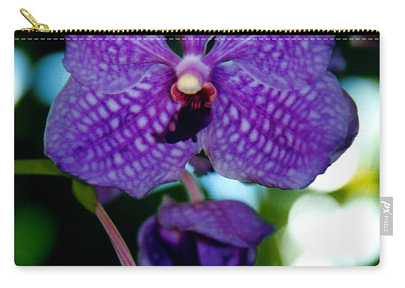 Orchid Carry-all Pouch featuring the photograph Deep Blue Orchid by Susanne Van Hulst