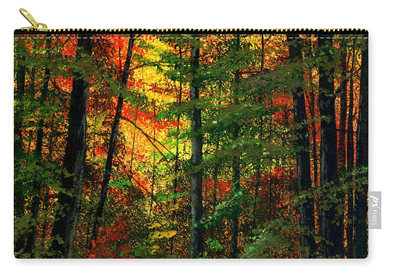 Landscape Carry-all Pouch featuring the painting Deep In The Forest by Frank Wilson