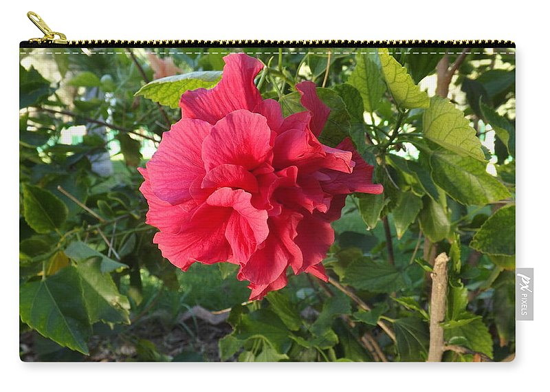 Photo Carry-all Pouch featuring the photograph Deep Pink by Constance Escobar