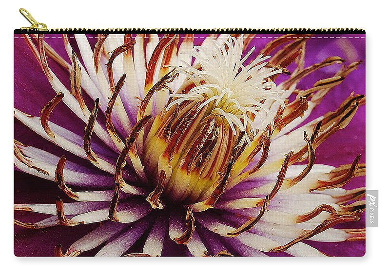 Clematis Carry-all Pouch featuring the photograph Deep Purple Clematis by Michael Peychich