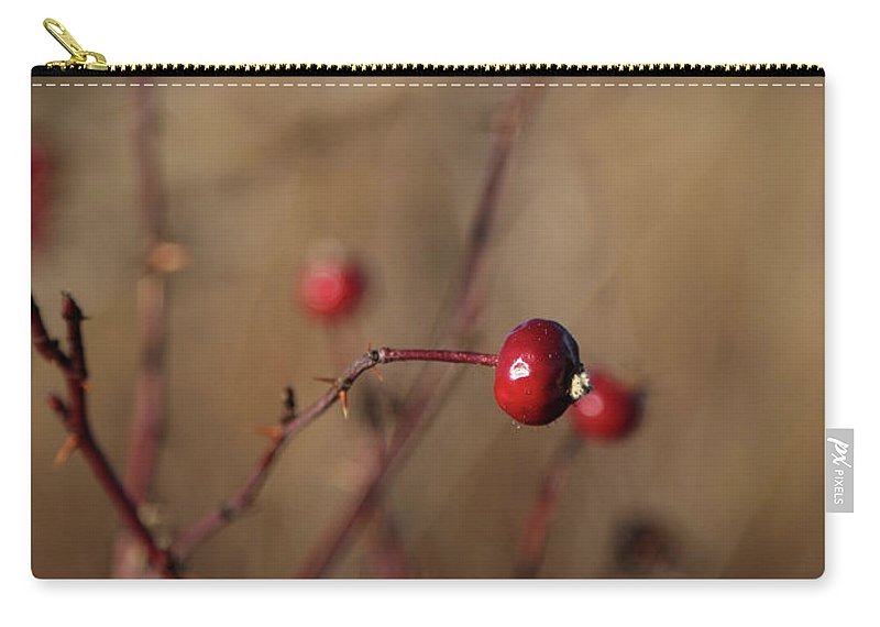 Nature Carry-all Pouch featuring the photograph Deep Red Rose Hips On Brown And Blue by Brooke T Ryan