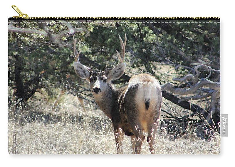 Deer Carry-all Pouch featuring the digital art Deer by Catie Shears