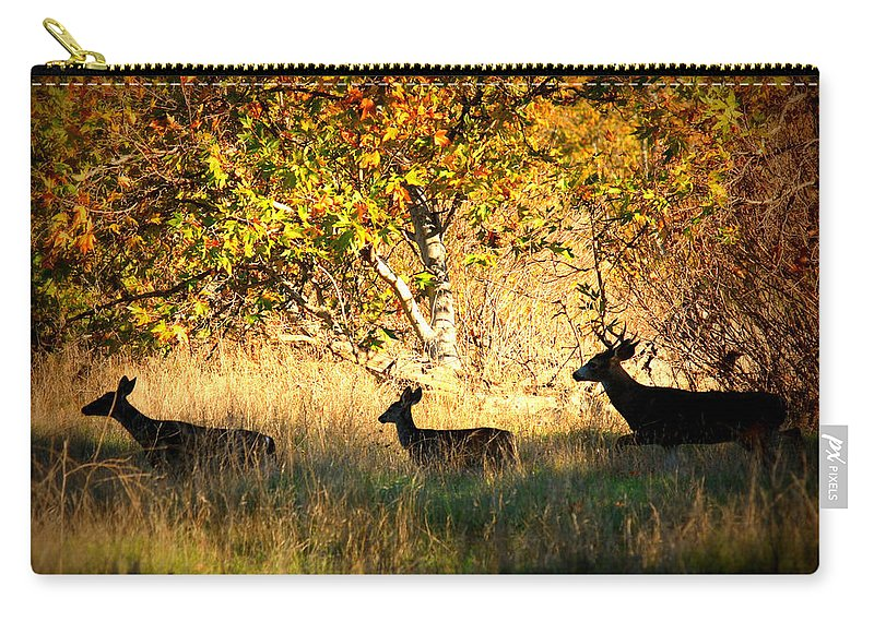 Landscape Carry-all Pouch featuring the photograph Deer Family In Sycamore Park by Carol Groenen